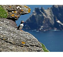 Puffin Skellig Island, Ireland Photographic Print