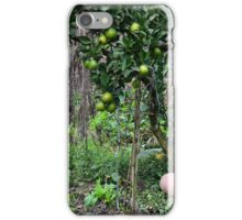 the garden iPhone Case/Skin