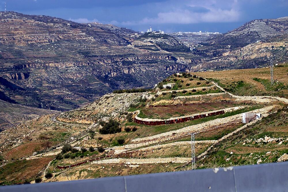 Landscape in Jordan by Julie Waller