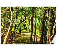 THE SUNKEN FOREST Poster
