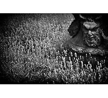 Devil planter at Athelhampton House Photographic Print