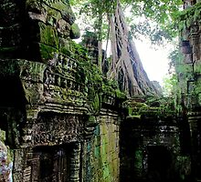 Ta Prohm Temple IX - Angkor, Cambodia. by Tiffany Lenoir