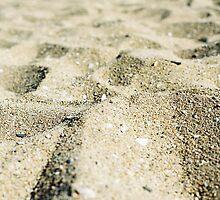Dune by JohnBassler