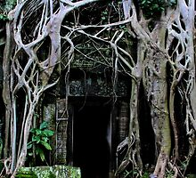 Ta Prohm Temple Door III - Angkor, Cambodia. by Tiffany Lenoir
