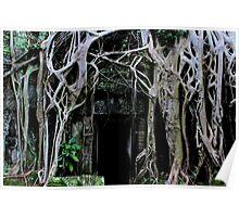 Ta Prohm Temple Door III - Angkor, Cambodia. Poster