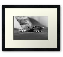 Can you see us? Framed Print