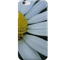 Pretty white chrysanthemum iPhone Case/Skin