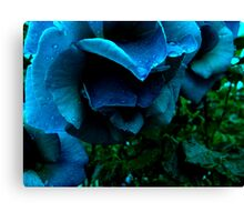 impossible dream Canvas Print