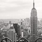 The view (New York) by Karin A