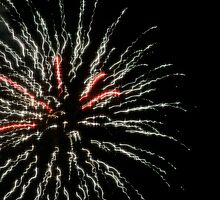 Independence Day 14 by Lita Medinger