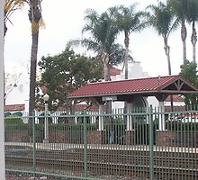 Fullerton Metrolink Station by daughterofaking