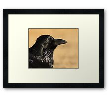 Sunset Raven Framed Print