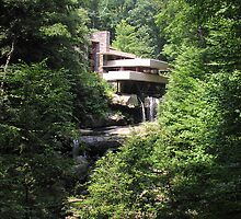 Fallingwater by butterflywings