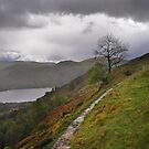 Ullswater by Peter Hammer