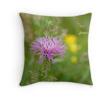 Brown Knapweed (Centaurea jacea) Throw Pillow