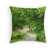 Take Me Home.....Old Country Road Throw Pillow