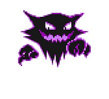 Haunter  Photographic Print