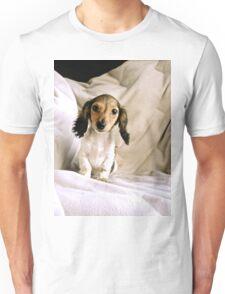 Soft Peaks Unisex T-Shirt