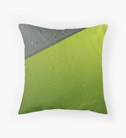 Water drop macro Throw Pillow