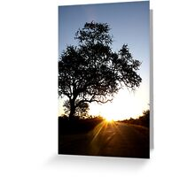 This is sunset boulevard... Greeting Card