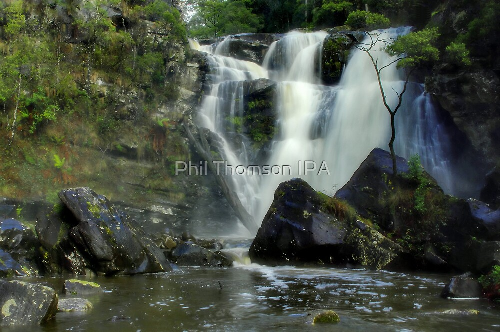 """Stevensons Falls"" by Phil Thomson IPA"