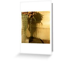 afternoon sun Greeting Card