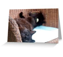 Chanelle, upside down Greeting Card