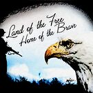 Land of the Free by Rebecca Richardson