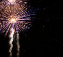 Independence Day 22 by Lita Medinger