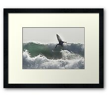 Surfing Currarong #2 Framed Print