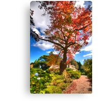 Natures  Glory - Mount Wilson - The HDR Experience Canvas Print