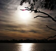 Moonrise - Lake Curlew, NSW by Gregory McInnes