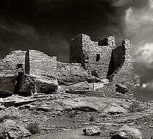 Anasazi Ruins by Sue  Cullumber