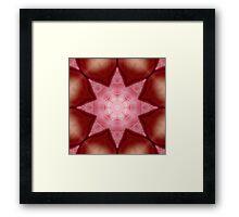 Petals and Star Framed Print
