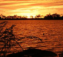Fire at Sunrise - Lake Curlew, NSW by Gregory McInnes