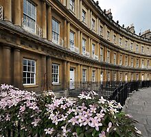 The Circus, Bath by Peter Hammer