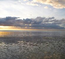 Sunrise - Myall beach, Cape Tribulation, North Queensland, Australia  by Paul Gilbert