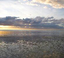 Sunrise - Myall beach, Cape Tribulation, North Queensland, Australia  by Paul Gilbert