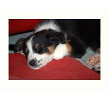 Lovely When Sleeping................. Art Print