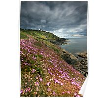 Cornwall : Flowering Lizard 2 Poster