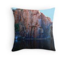 Python Pool Throw Pillow