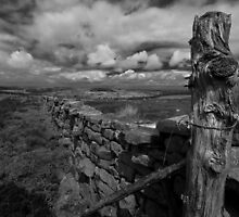 Clints Moor by peartree