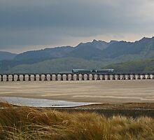 Afon Mawddach Estuary by Kat Simmons