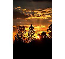 Luv Da Sunshine Photographic Print