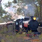 Bush Rail Service by Clive