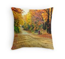 Color Book Road  Throw Pillow
