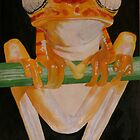 Frog by t0mt0m