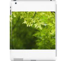 Green Forest Gate iPad Case/Skin