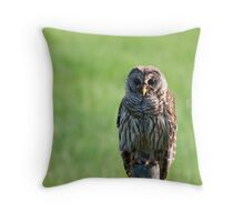 Hoo  Hoo are you looking at  Throw Pillow