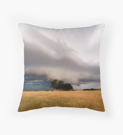 The Winds Sweeping Down the Plains Throw Pillow